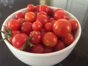 TG cherries 9.2.15