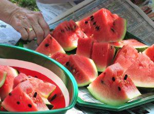 watermelom sliced
