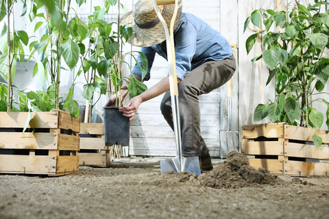 woman digging to plant